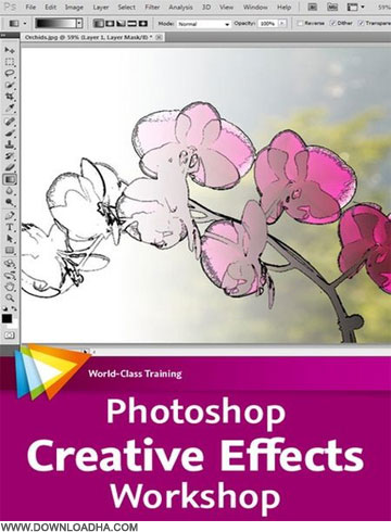 Creative     Photoshop Creative Effects Workshop