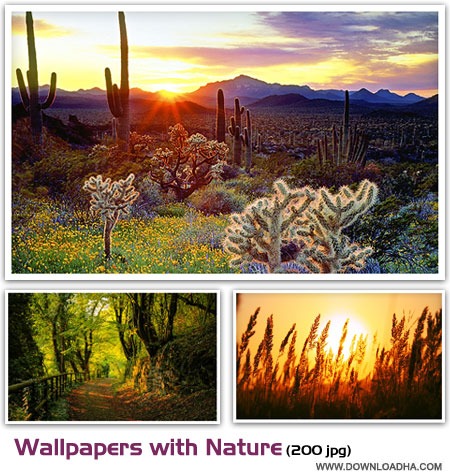 wallpapers with nature 22.06 مجموعه 200 والپیپر زیبا با موضوع طبیعت Wallpapers with Nature